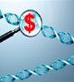Vállalkozói DNS?